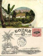 Tonga Islands, Pineapple Plantation (1909) Pre-Printed Stamp - Tonga