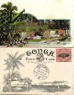 Tonga Islands, Native Stripping Bark For Tappa Making (1909) Pre-Printed Stamp - Tonga