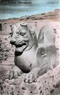 Iran Persia, PERSEPOLIS SHIRAZ, Ruins (1950s) Tinted RPPC (4) - Iran