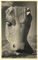 Iran Persia, PERSEPOLIS, Persian Bull's Head Capital (1930s) RPPC - Iran