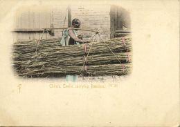 China, HONG KONG, Native Chinese Coolie Carrying Bamboo (1899) IV 20 - China (Hong Kong)