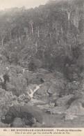 Océanie - Nouvelle-Calédonie - Précurseur - Forêt De Naioulis -  N° 59 - New Caledonia