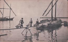 Lac Léman (Déchargement D'un Voilier à La Brouette) - GE Genève