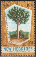 Nouvelles Hebrides 1969 Michel 277 Neuf ** Cote (2005) 0.80 Euro Arbre Agathis Australis - Légende Anglaise