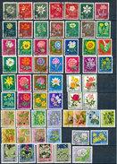 Sammlung  Blumen  Im Gebrauchten Einsteckalben  Mit   25 Sätzen - Briefmarken