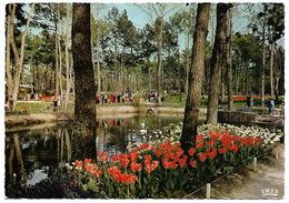Parc Résidentiel De LA PALMYRE FLORALIES - Sonstige Gemeinden