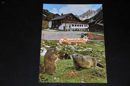 901- Alpengasthof Bachlalm, Ramsau - Ramsau Am Dachstein