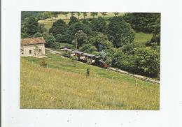 BLIGNY SUR OUCHE 21630 CHEMIN DE FER DE LA VALLEE DE L'OUCHE LE TRAIN A VAPEUR EN LIGNE 1982 - France