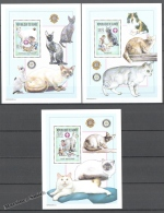 Guinée Republique - Guinea 2002 Yvert 2546-48, Scouting & Fauna. Cats - Special Blocs  - MNH - Guinée (1958-...)