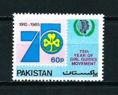 Pakistán  Nº Yvert  628  En Nuevo
