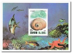 Noord Korea 1994, Postfris MNH, Sea Snails - Korea (Noord)