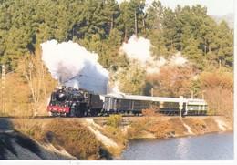 CPM TREN Especial Galaico Express  141 EUROFER-AMICS DEL FERROCARRIL  Scans Recto Verso N° 880 - Trenes