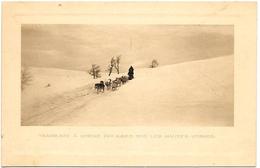 D88 .CPA .  Environs SAINT AMARIN HAUTES VOSGES . TRAINEAUX A CHIENS POLAIRES ...1916 .. - Saint Amarin