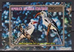 EQUATORIAL GUINEA : Michel Block 246 – Used – Roodsnaveltok – Calao à Bec Rouge – Northern Red-b - Guinée Equatoriale