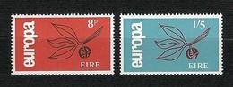 "EIRE 1965 - Europa, ""Sprig"" - MNH - Yv:IE 175-76 - 1949-... Repubblica D'Irlanda"