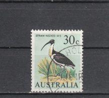 Australie YT 334 Obl : Ibis D'Australie - 1966