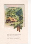 AK Künstlerkarte - Bauernhaus In Den Bergen - Tannenzapfen- Gedicht Eichendorff- VEB Volkskunstverlag - Ca. 1950 (28231) - 1900-1949
