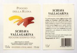 Schiava Vallagarina - 1,5 Litri - Azienda Agricola L. Mario Cipriani - Marco Di Rovereto (Trento) - (FDC4112) - Vino Rosato