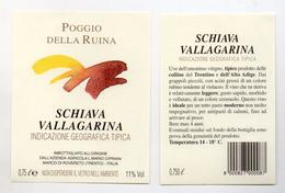 Schiava Vallagarina - 0,75 Litri - Azienda Agricola L. Mario Cipriani - Marco Di Rovereto (Trento) - (FDC4113) - Vino Rosato