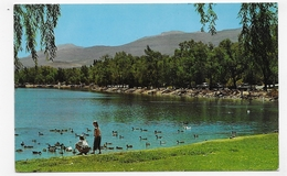 USA - NEVADA - RENO - VIRGINIA LAKE - FORMAT CPA VOYAGEE - Reno
