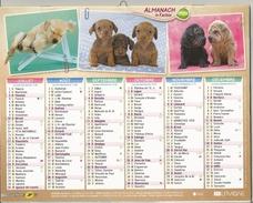 Calendrier Du Facteur 2016 - Chiots : Labrador Teckels Et Bouledogues - Chatons - Calendarios