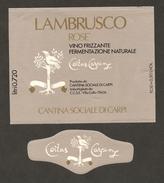 ITALIA - Etichetta Vino LAMBRUSCO DELL'EMILIA Cantina S. CROCE Di Carpi Rosato Dell'EMILIA - Falcone Su Albero (carpine) - Vino Rosato