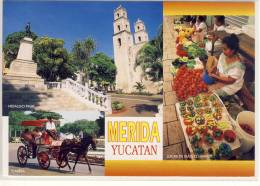 MERIDA - MEXICO YUCATAN ; Lucas De Galvez Market, Hidalgo Park, Calesa - México