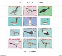 Sint Maarten 2016, Birds, Sheetlet