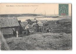 CPA Terre Neuve Une Homarderie Francaise Au French Shore - Saint-Pierre-et-Miquelon