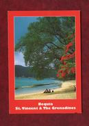 Saint-Vincent Et Les Grenadines - Beach At Lower Bay - Bequia - Saint-Vincent-et-les Grenadines