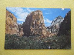 Le Zion National Park. Les Anges Sur Terre. - Zion