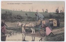 La Vie Aux Champs Cpa En Couleur Passage Du Ruisseau  Superbe - Paysans