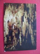 Jijel  Carte Postale Dos Divisé SNED N° M 141   Jijel    Les  Grottes Merveilleuses  Neuve    TB - Algérie