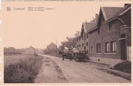 Bierbeek - Lovenjoel - Molen En Gehucht Bruul - Bierbeek