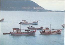 Deo Co Ma, Khanh Hoa, Co Ma Pass, 1991 Used Postcard [19954] - Vietnam