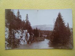 CROWSNEST PASS. Blairmore. - Alberta