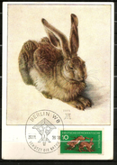 GERMANIA Cartolina MXIMUM Animali Animals - Fattoria