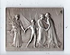 Compagnie Des Chemins De Fer De Paris - Lyon - Méditerranée . Médaille Assemblée Générale Des Actionnaires - Réf. N°3M - - Chemin De Fer