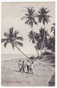 CEYLON, SEA SHORE SCENE, NATIVE PEOPLE AND PALM TREES, C1910s Postcard - CEYLAN - SRI LANKA - Sri Lanka (Ceylon)