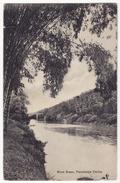 CEYLON - PERADENIYA RIVER SCENE & BRIDGE, C1910s Vintage Postcard - CEYLAN - SRI LANKA - Sri Lanka (Ceylon)