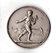 64 - Médaille . Société D'Agriculture Des Basses-Pyrénées . Graveur JEAN LAGRANGE . Pyrénées-Atlantique - Réf. N°6M - - Professionnels / De Société