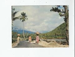 MITSAMIHOULI (GRANDE COMORE) 83 SUR LA ROUTE COTIERE - Comoros