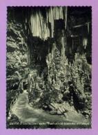 Grotte Di Castellana (Bari) - Fantastico Scenario Naturale - Bari