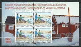 Greenland 1996 The National League Of Handicapped And Disabled In Greenland.Health/Disabled.S/S.MNH - Greenland