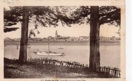 Croix-de-Vie.. St-Gilles-Croix-de-Vie.. Belle Vue De Saint-Gilles Voilier - Saint Gilles Croix De Vie