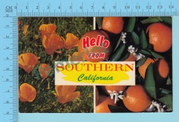USA Multi-vues, Hello From Southern California - 2 Scans - Souvenir De...