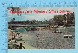 Greetings From Florida's Silver Spring , USA -  2 Scans - Souvenir De...