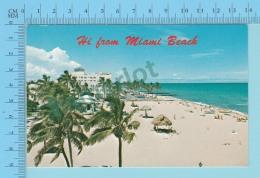 Hi From Miami Beach, Florida, USA -  2 Scans - Souvenir De...