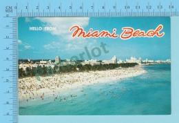Hello From Miami Beach Florida USA  Used In 1966 -  2 Scans - Souvenir De...