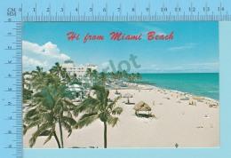 Hi From Miami Beach Florida USA  -  2 Scans - Souvenir De...